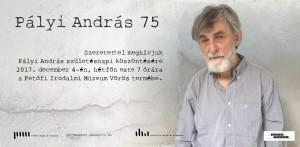 Pályi András 75