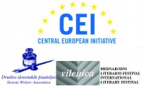 CEI+SWA pályázat fiataloknak